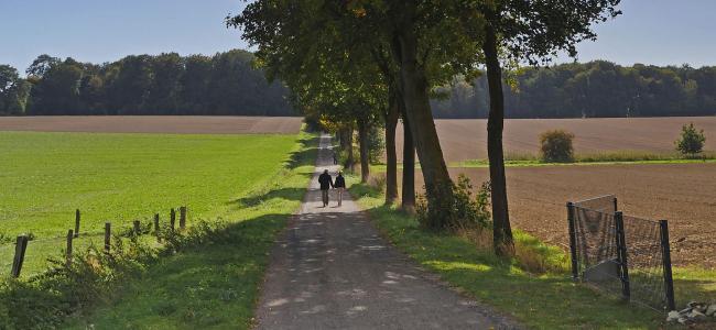 Wandern-in-den-Baumbergen_Blog-unterwegs-muenster